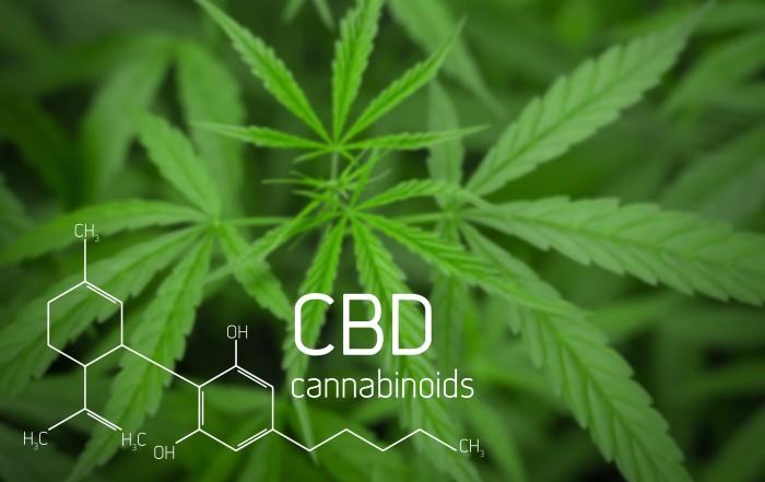 What is cannabinoid