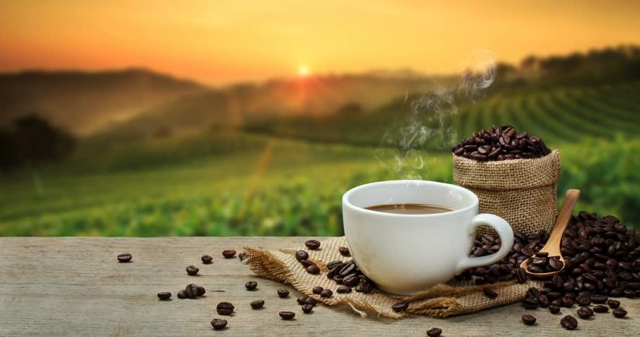 cbd coffee - Herbane Health