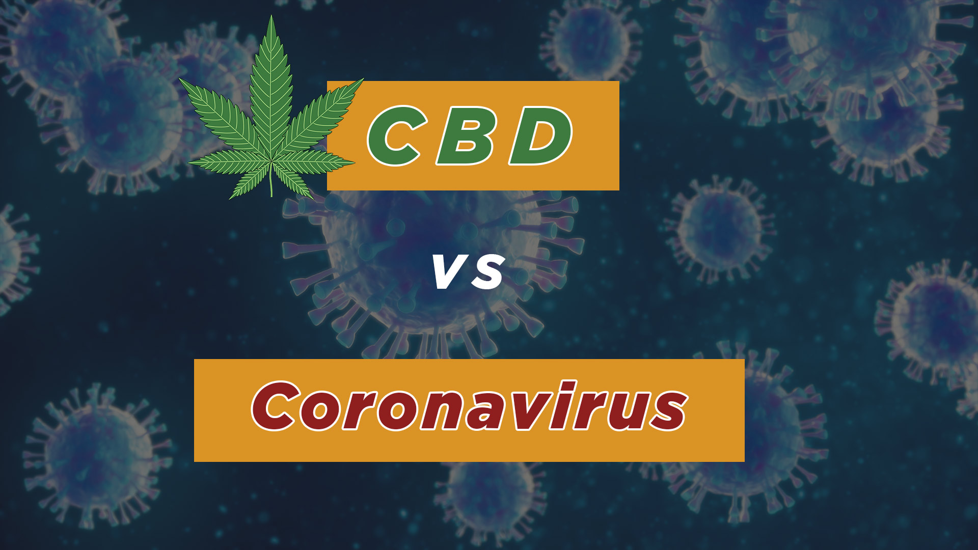 cbd and corona virus -Herbane Health